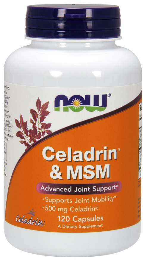 Celadrin® & MSM 500 mg Capsules | Advanced Joint Support*