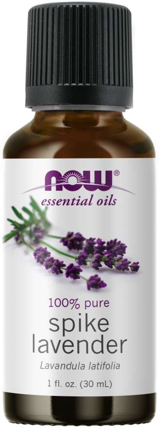 Spike Lavender Oil | 100% Pure