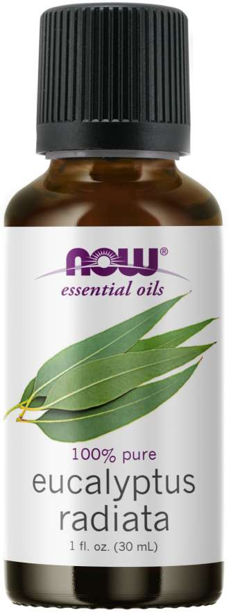 NOW - Eucalyptus Radiata Oil | 1 oz