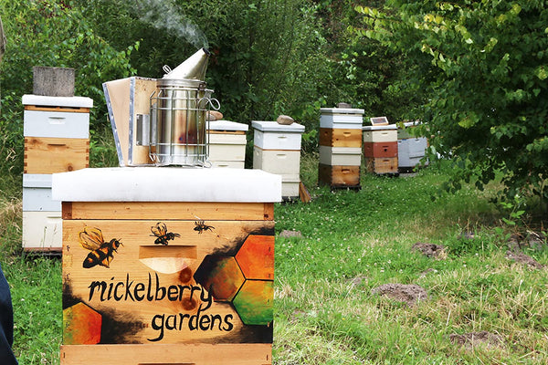 Mickelberry Gardens, Tonic Ginger Honey, 4 Ounce