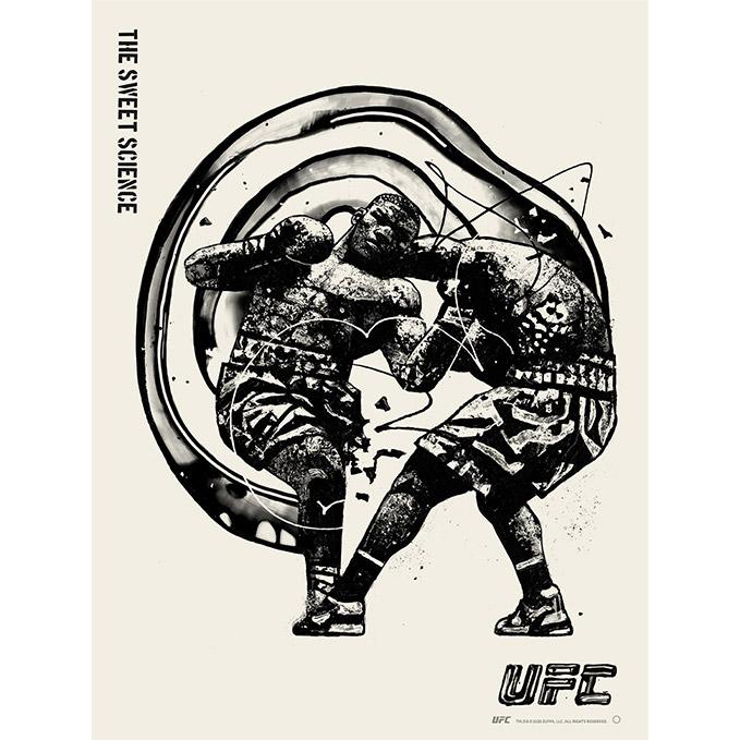 UFC Disciplines The Sweet Science Poster