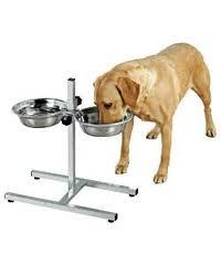 Balanced dog food diet explained. DogSiteWorld