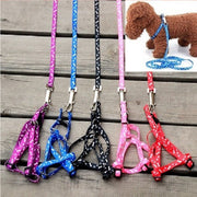 Nylon Pet Cat Doggie Puppy Leashes Lead Harness Belt Rope Hot