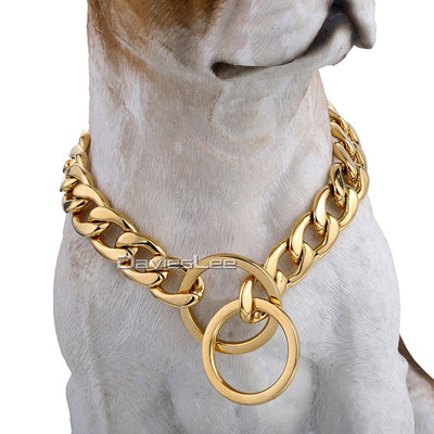 Davieslee Dog Chain Collar Gold Silver Tone 316L Stainless Steel