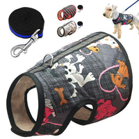 Spring Dog Cat Harness Leash Set Print Pet Harnesses