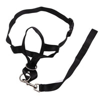 Nylon Dog Head Control Training Leash Adjustable Harness Halter Training Nose Reigns