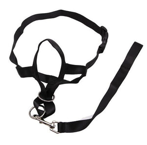 Nylon Dog Head Collar Pet Gentle Leader No Pain No Pull Control