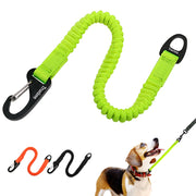 Short Bungee Dog Leash Elastic Bungee Buffer Dog Leash