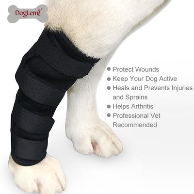 Pet dog knee hock brace bandages straps for