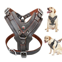 Large Dogs Genuine Leather Harness