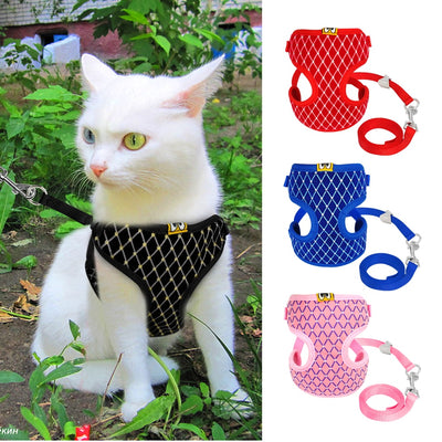 Cute Dog Cat Harness Vest Breathable Mesh Leash Set Small Nylon Soft Pet Chest Strap