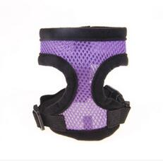 Breathable Harness for Small Dog