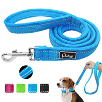 Reflective Dog Leash Nylon Warm Padded Pet Walking Lead Rope