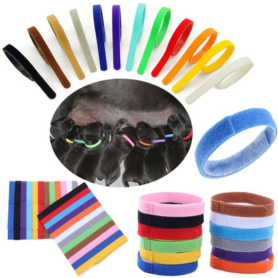 Low Price 12 Colors Identification ID Collars Bands