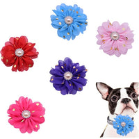 Removable Pet Collar Charms