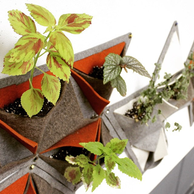 Feature of the week: Vàs Vertical Planters
