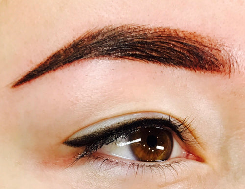 Machine Ombre' Brow Course