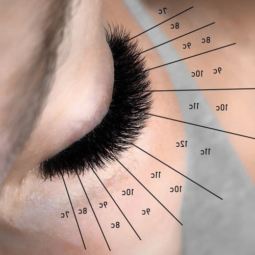 Combo Lash Course (Learn to Lash 101 + Everything Volume)