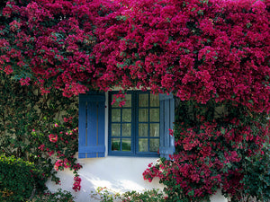Blue Window of La Quinta