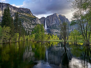 Yosemite Falls and Flooded Meadow