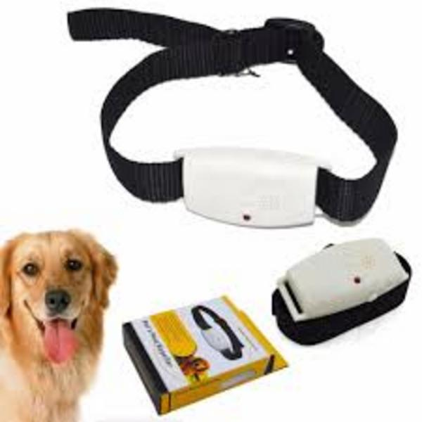 Dog / Cat Ultrasonic Pest Repeller ( Fleas , Ticks )
