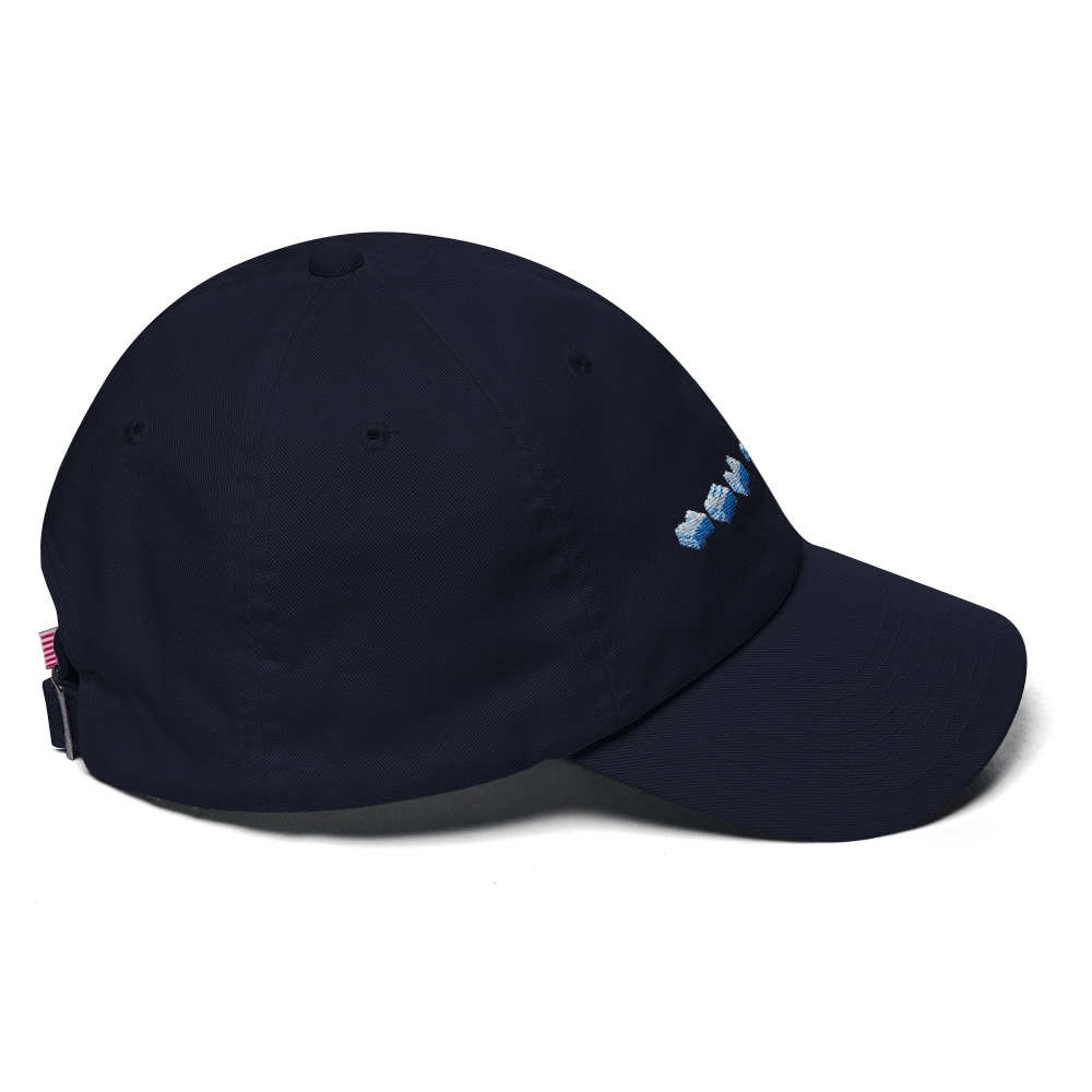 3D New York Dad Hat