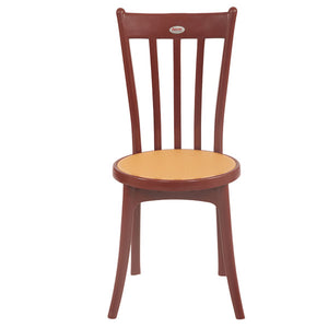 Antik Globus Brown Premium Chairs