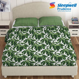 Sleepwell Prudence Cotton Bedsheets