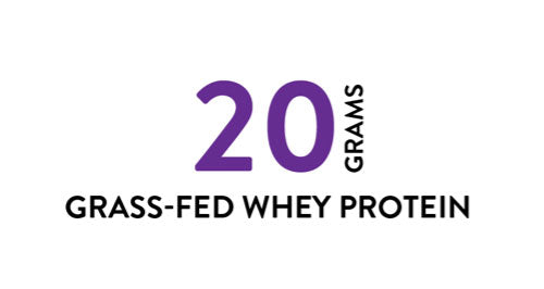 20 grams grass fed whey protein workout supplements