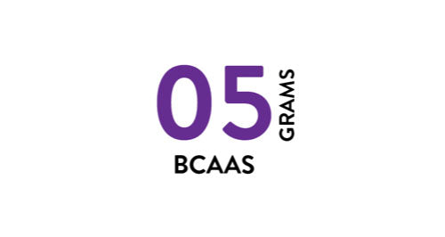 bcaas supplements gyms wholesale