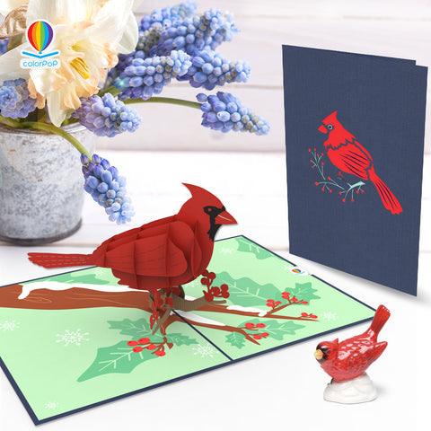 cardinal pop up cards