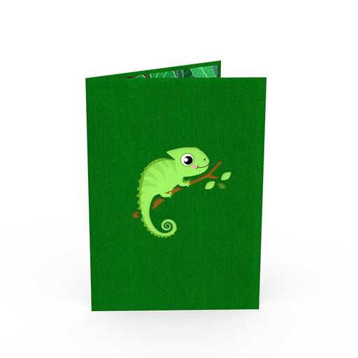 Chameleon Pop Up Card Outside