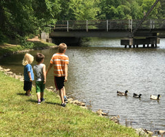 three young boys overlooking ducks in a pond at the park