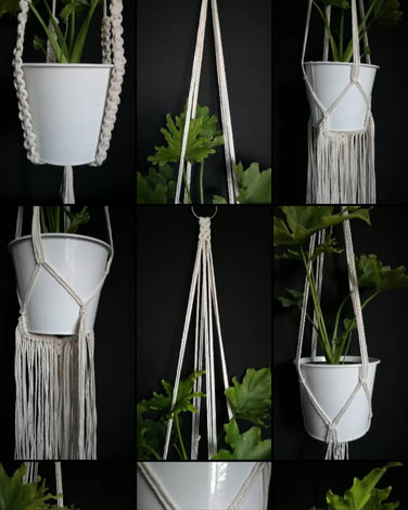 Plant Hangers & Wall Hangings