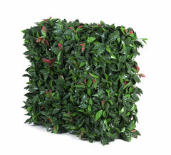 Portable UV Artificial Hedge Plant Photinia 75cm X 75cm
