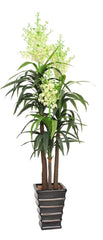 Artificial Sisal (Flowering Dracaena) Plant Multiple Heads 185cm