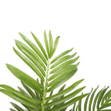 Artificial Potted Areca Palm Tree 120cm