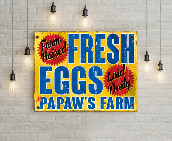 Fresh Eggs, farm raised, laid daily, shown displayed, mounted on white brick wall, hanging lights.