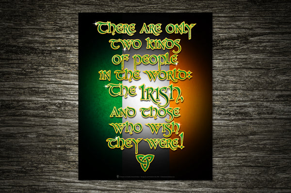 There are only two kinds of people in the world, the Irish and those who wish they were, Irish humor poster print, canvas print, shown mounted on old style stone wall.
