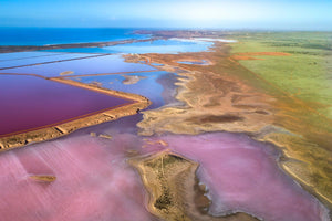 Colours of Salt Lakes 1195