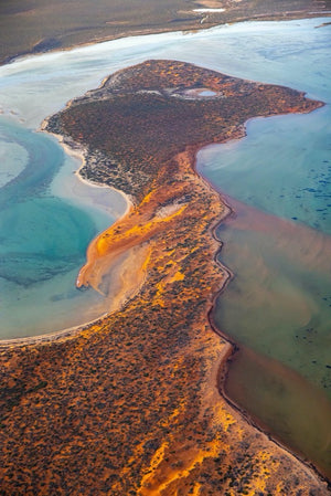Colours of Shark Bay Western Australia -1380