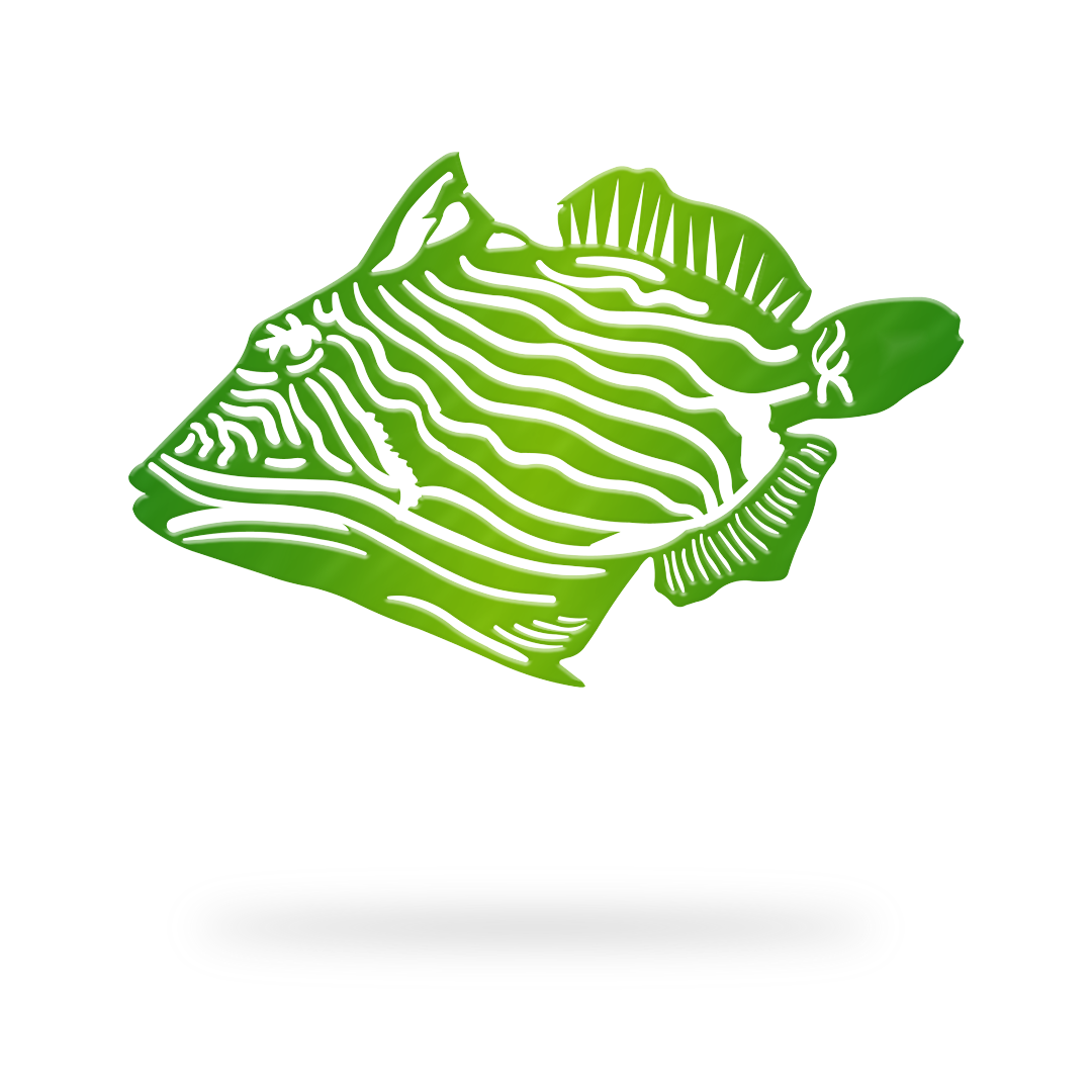Trigger Fish Sign with green finish