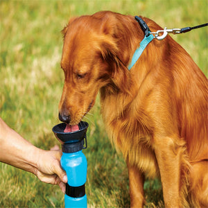 Portable Dog Water Feeder Outdoor Pet Kettle