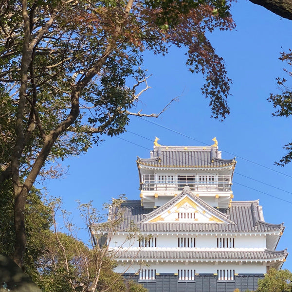 Japan Less Traveled Spots – Gifu Castle