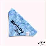 """BIRTHDAY BOY"" - Over-Collar Dog bandana"