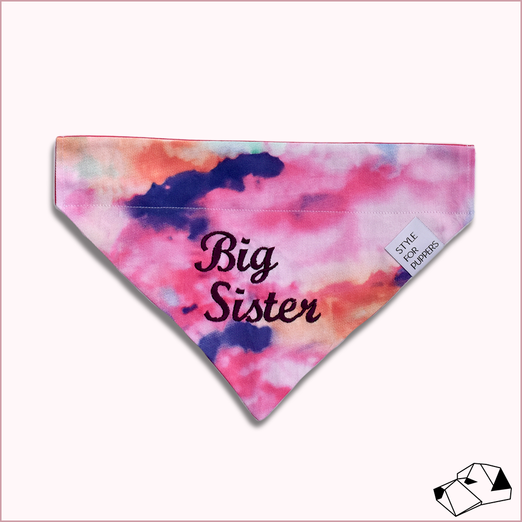 """BIG/LITTLE SISTER"" - Over-Collar Dog bandana"