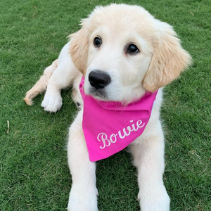 """DESIGN YOUR OWN (Hot Pink)"" - Dog bandana with embroidery"