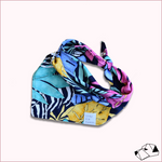 """RAINBOW SAFARI"" - Matchy-Matchy Bandana Only"