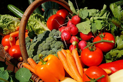 Top 3 Things to do NOW for a Better Vegetable Garden in 2021