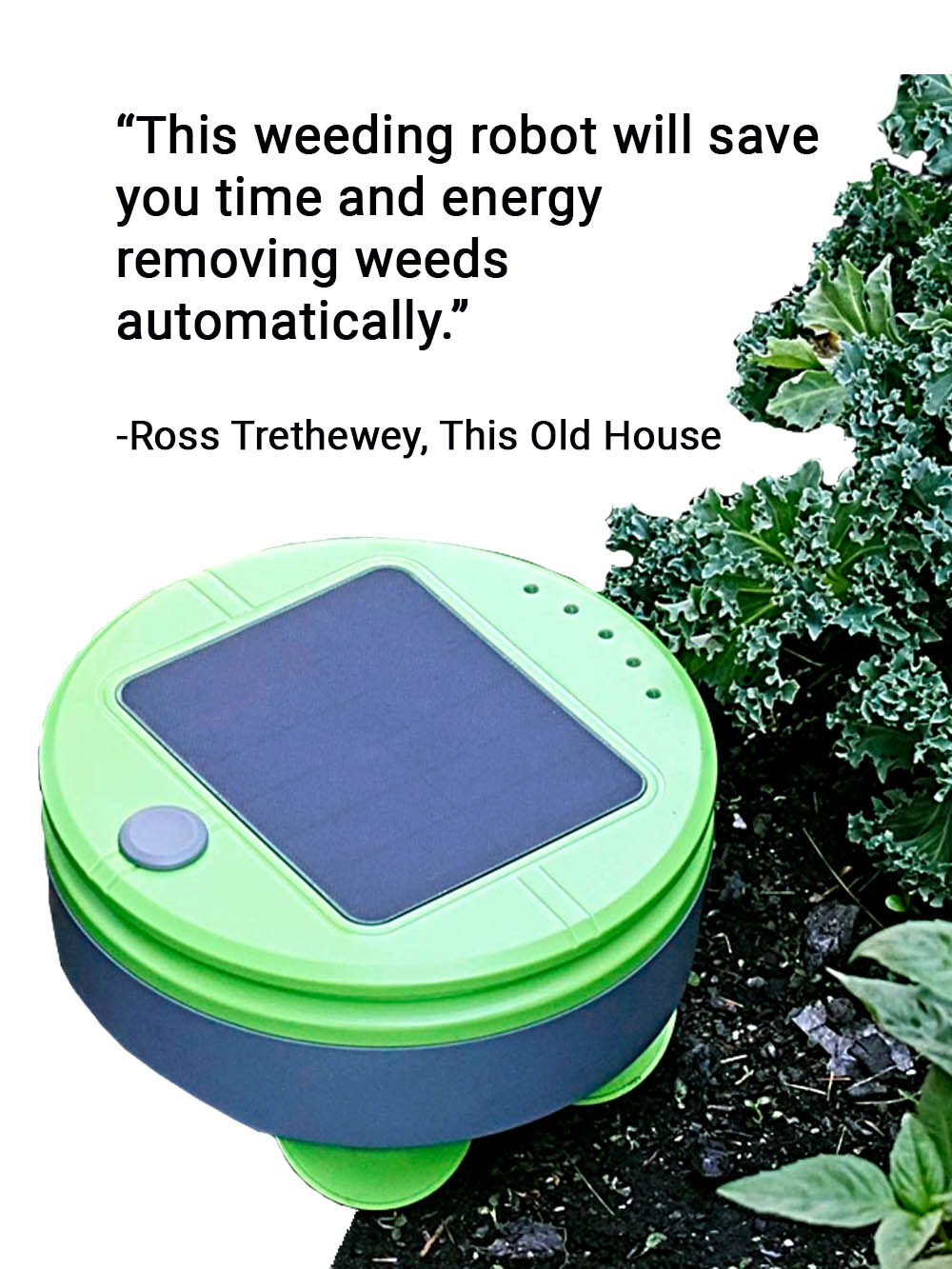 Ross Trethewey, from This Old House Quote on how Tertill the weeding robot will save you time and energy weeding your garden automatically.